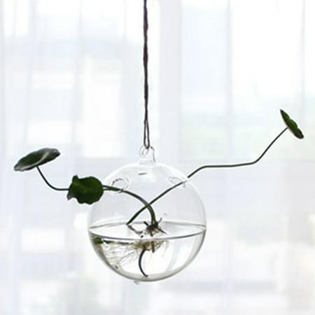 Hanging Transparent Glass Globe Plant Terrariums Succulents Moss Miniature Garden Planters Home Decor Gifts