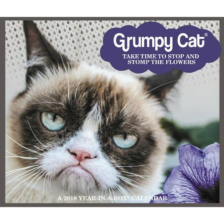 2018 Year-In-A-Box Grumpy Cat Calendar (Cat Desk Calendar)