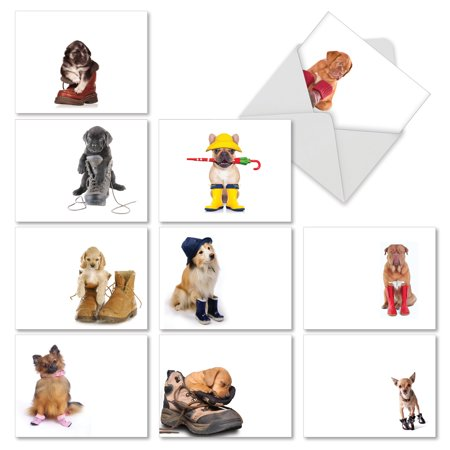 M2980OCB THESE BOOTS ARE MADE FOR PUPPIES' 10 Assorted All Occasions Note Cards Featuring Adorable Puppies Sitting Inside Various Shoes and Boots, with Envelopes by The Best Card
