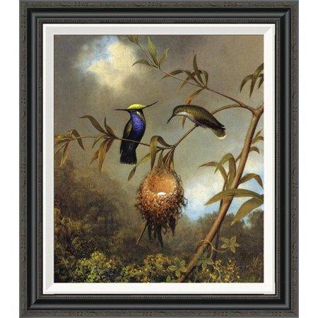 Global Gallery 'Black Breasted Plovercrest' by Martin Johnson Heade Framed Painting Print