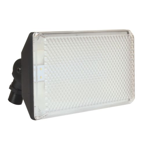 AFX Lighting Outdoor Floodlight by American Fluorescent