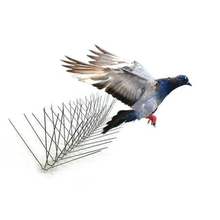 Bird-X Extra-Wide Stainless Steel Bird Spikes, 10 feet 8