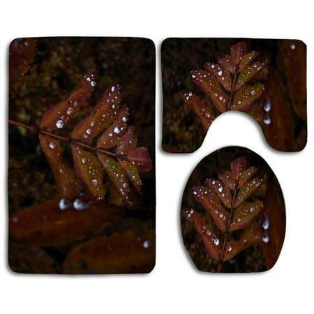 Pudmad Wet Rust Colored Leaves 3 Piece Bathroom Rugs Set