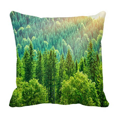 PHFZK Green Forest Landscape Pillow Case, Beautiful Bird Eye View on Pines in the Morning Sun Light, Alpine Mountains Pillowcase Throw Pillow Cushion Cover Two Sides Size 18x18 inches