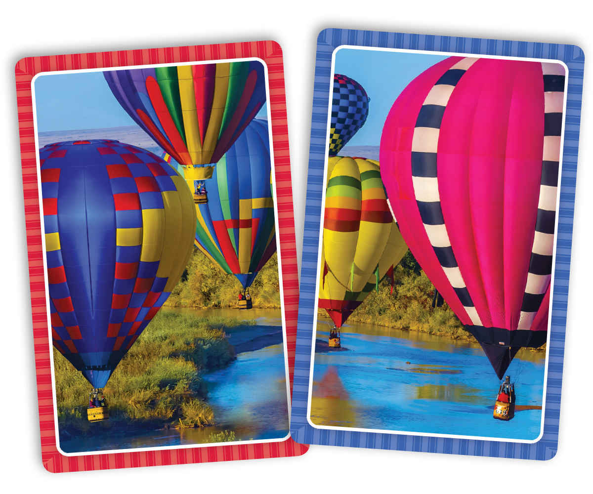 Take Flight Jumbo Print Index Playing Cards by Springbok Puzzles