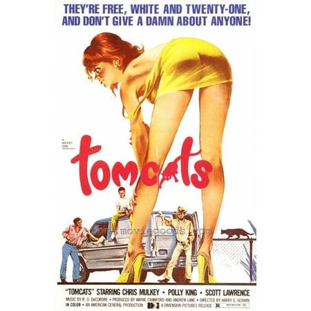Tomcats Movie Poster Print  27 X 40