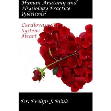 Human Anatomy and Physiology Practice Questions: Cardiovascular System: Heart -