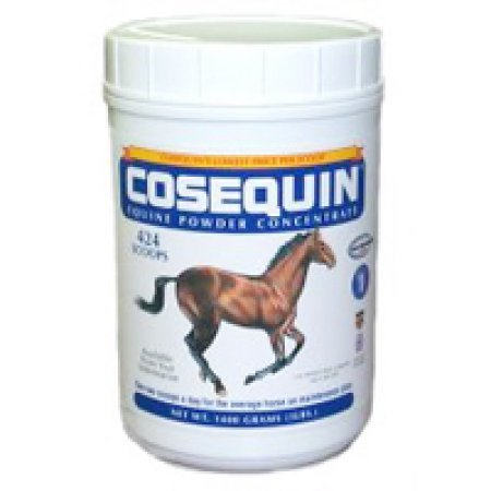 Nutramax Cosequin Concentrated Powder Joint Health Horse Supplement, 280 grams