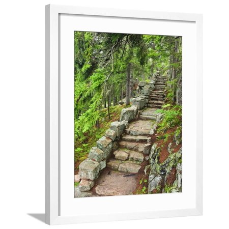 A Stone Staircase at the Thuya Gardens in Northeast Harbor, Maine, Usa Framed Print Wall Art By Jerry & Marcy Monkman