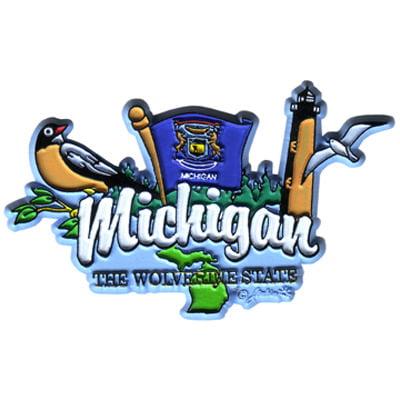DDI Michigan Magnet 2d Elements (pack Of 96)