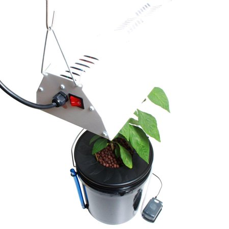 Black Bucket Deep Water Culture DWC Hydroponic System with Grow Light and Timer