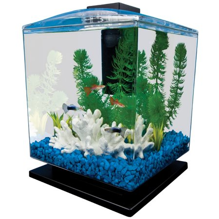 Tetra aquarium cube tank 1 5 gal for Betta fish tanks amazon