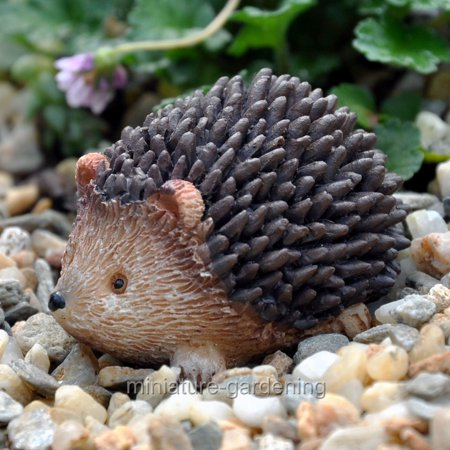 Miniature Herbie Hedgehog for Miniature Garden, Fairy Garden ()