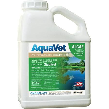 Controlling Algae Pond - Durvet Aquavet D-Aquavet Algae Control With Stabitrol 1 Gallon
