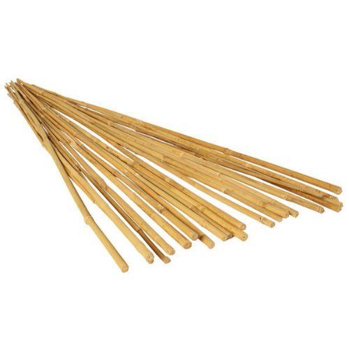 Natural bamboo Stakes Over 5 Feet Tall - Pack of 20 - Natural Yellow