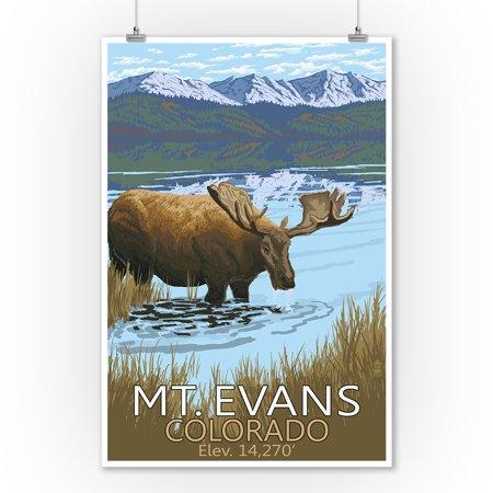 Moose Outdoor Wall - Mt. Evans, Colorado Elv. 14,270 - Moose & Lake - Lantern Press Artwork (9x12 Art Print, Wall Decor Travel Poster)
