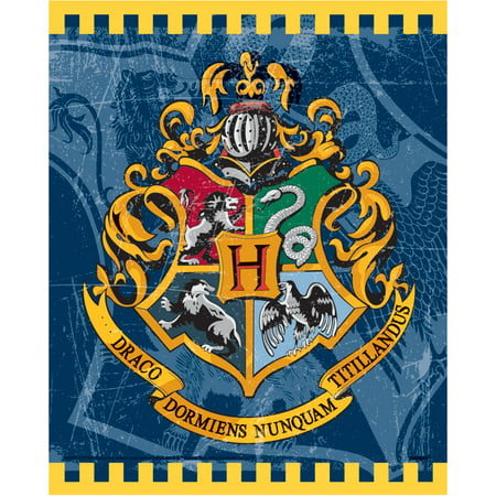 Plastic Harry Potter Goodie Bags, 8ct - Thanksgiving Goodie Bags