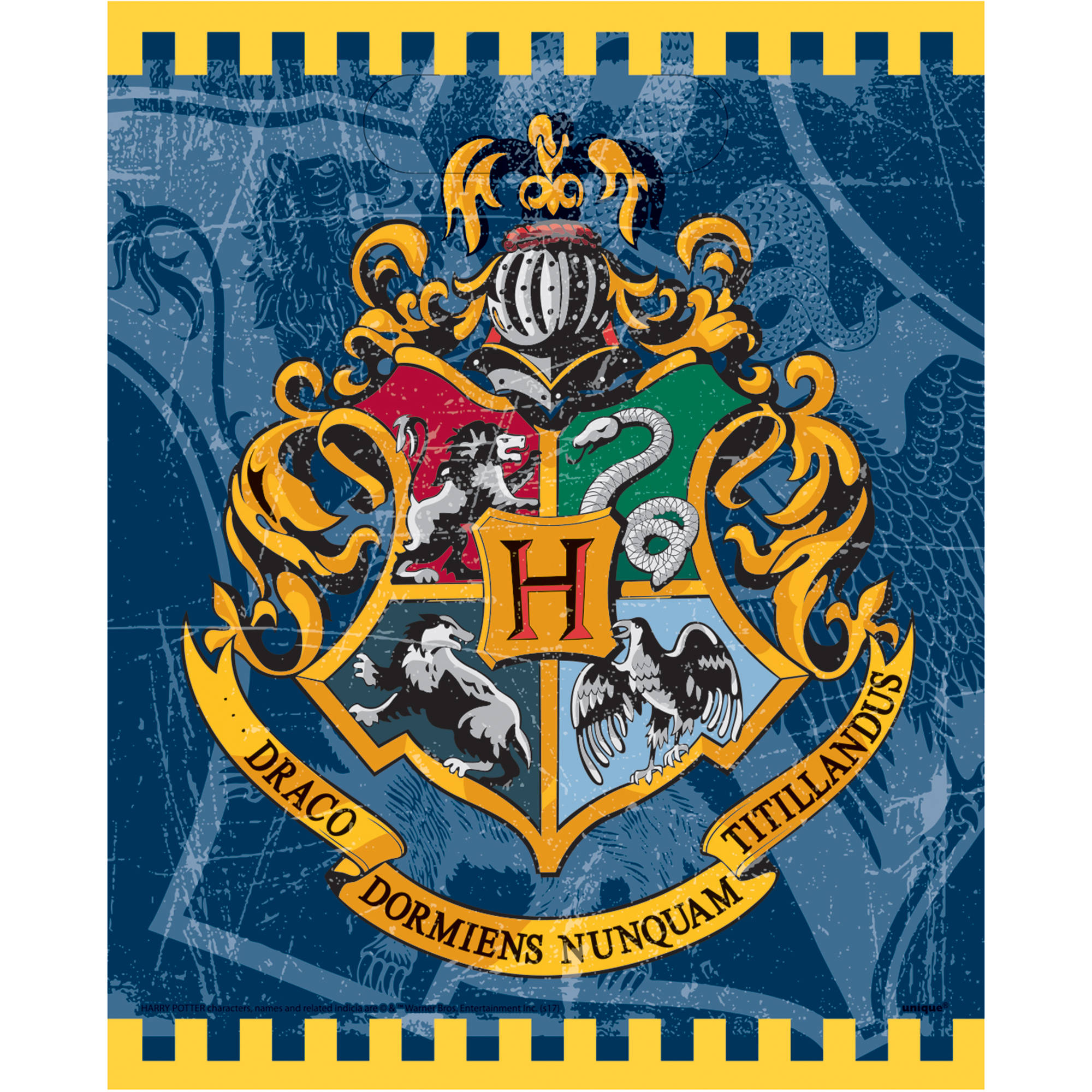 Plastic Harry Potter Goodie Bags, 9 x 7 in, 8ct