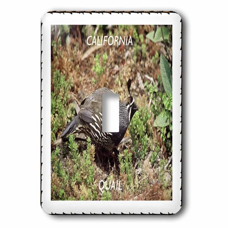 3dRose California State Bird Quail - Single Toggle Switch (lsp_50880_1) (State Toggle)