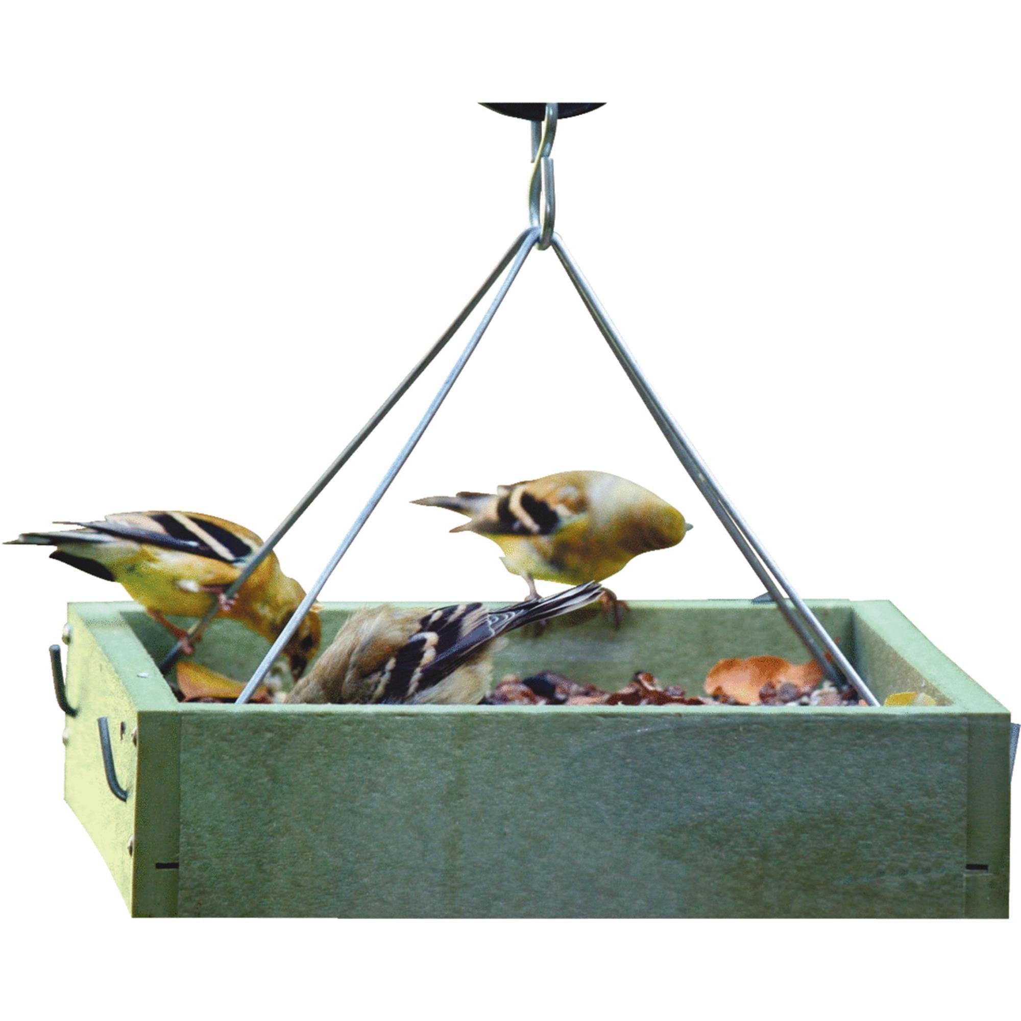 Bird's Choice Green Solutions Tray Birdfeeder by Birds Choice