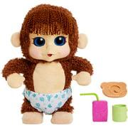 Animal Babies Feature Monkey, Jumpin Lil Monkeys, Boy