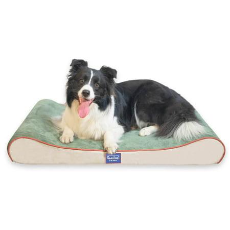 Laifug Foam Mattress Dog Bed Contour, Waterproof Outdoor Dog Bed Canada