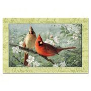 Counter Art CART46980 Beautiful Songbirds Paper Placemats 24 per set