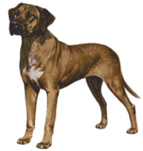 Rhodesian Ridgeback Dog Counted Cross Stitch Pattern