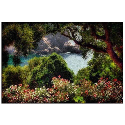 "Trademark Fine Art ""Water Plain"" Canvas Art by Lois Bryan"