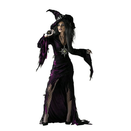 Sorceress Women's Adult Halloween Costume, One Size, 12-14