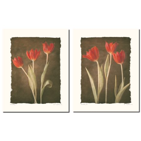Sonata I Vintage Red Long-Stemmed Tulips; Floral Decor; Two 8X10 Poster Prints