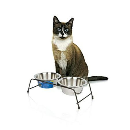 Cat Food Bowl Elevated