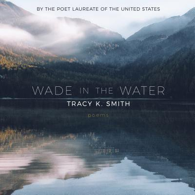 Wade in the Water : Poems (The Soul Stirrers Wade In The Water)