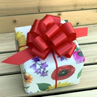 "Red Christmas Gift Pull Bows - 5"" Wide, Set of 10, Valentine's Day, Easter"