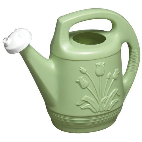 Bloem Watering Can (Set of 12) by Bloem