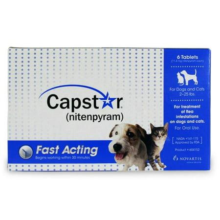 Dog Flea And Tick Pill Reviews