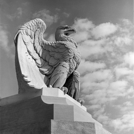 1960s Eagle Statue Against Sky Clouds Wings Spread Feathers Talons Curled over Edge of Base Print Wall Art