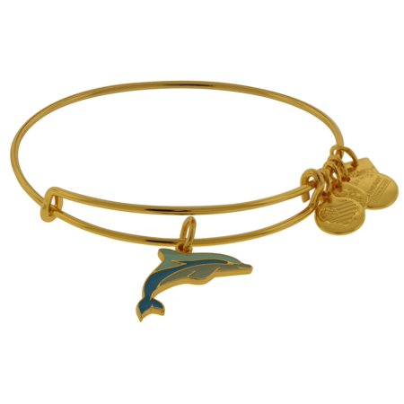 Alex and Ani Charity By Design Dolphin EWB Bangle Bracelet - CBD17DFSG