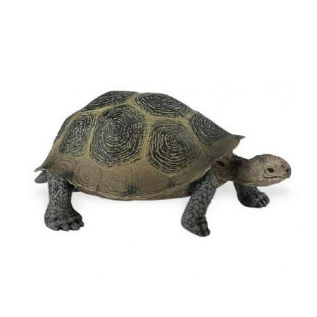 Desert Tortoises - Safari Ltd Wild Safari North American Wildlife - Desert Tortoise - Realistic Hand Painted Toy Figurine Model - Quality Construction From Safe and BPA Free Materials - For Ages 3 and Up