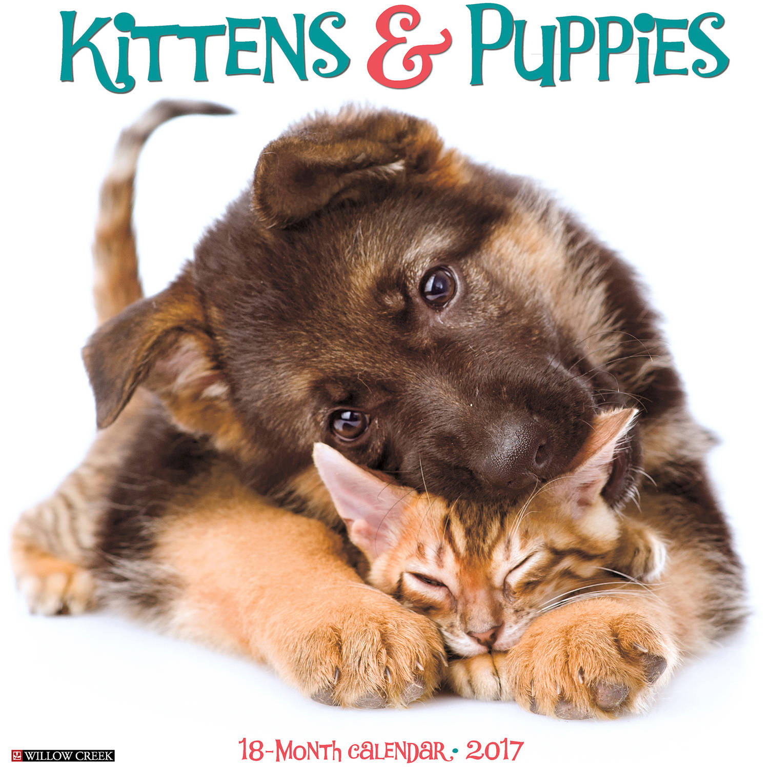 2017 Kittens and Puppies Wall Calendar