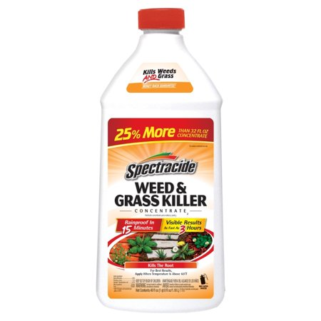Spectracide Weed & Grass Killer Concentrate, 40-fl (Spectracide Triple Strike Grass And Weed Killer)