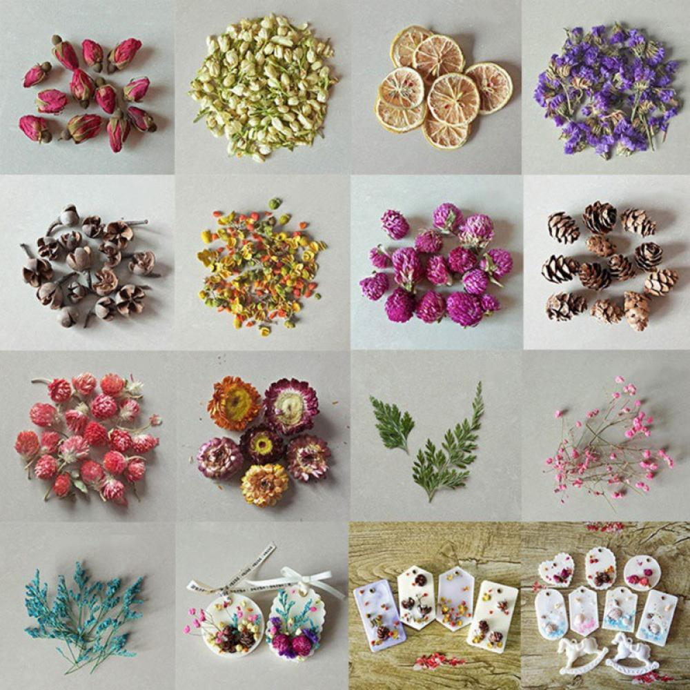 School of Fish dried flowers and herbs art pendant