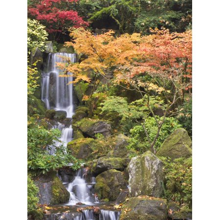 Heavenly Falls and Autumn Colors, Portland Japanese Garden, Oregon, USA Print Wall Art By William Sutton ()