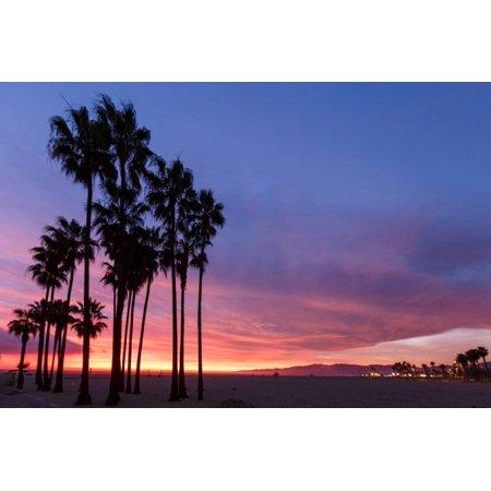 Venice Beach, CA, USA: Evening Sky Over Pacific Ocean, Santa Monica Mts & Pier With Palm Trees Print Wall Art By Axel Brunst