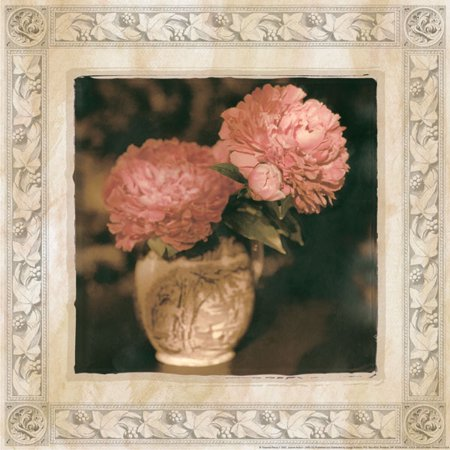 Red Flower Photo - Imperial Peony I Retro Red Amazing Vase Photo Awesome Classy Best Flower Pink Poster 12X12