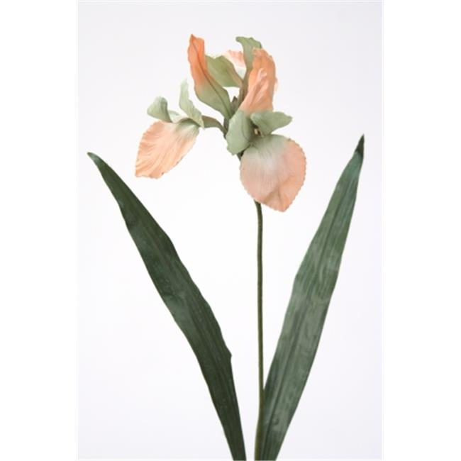 Distinctive Designs DW-987-SOCD DIY Flower Sonia Celedon Large Iris - Pack of 6