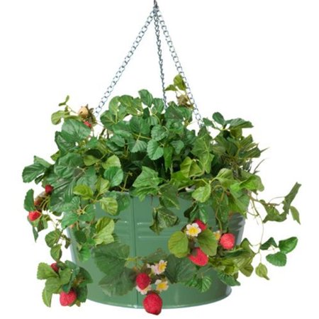 Hanging Strawberry Planter - Enameled Galvanized Hanging Strawberry & Flower Planter, Sage