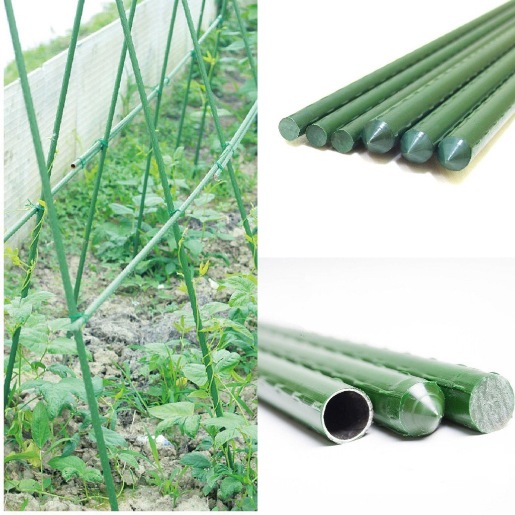 Sturdy Steel Garden Stakes 2 Ft Plastic Coated Plant Stakes, 10 Packs For  Climbing
