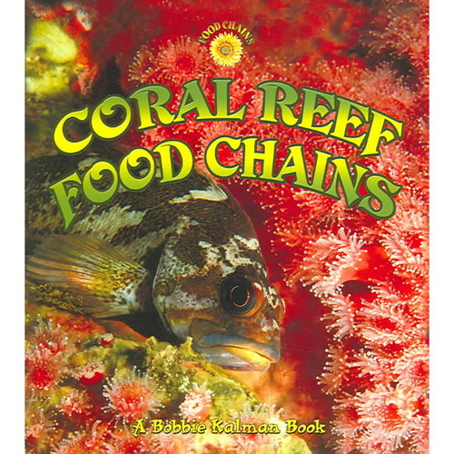Coral Reef Food Chains