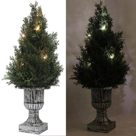 "18"" Decorative Green Artificial Topiary National Tree Plant in Plastic Pot w/10LED Lights"